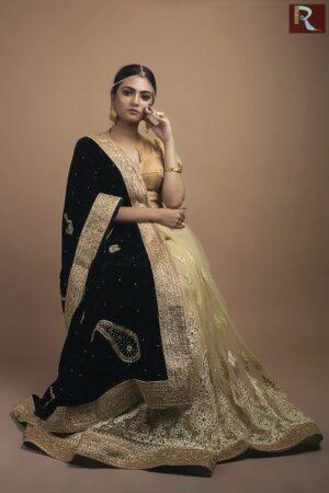 Designer Saree -Half velvet half net