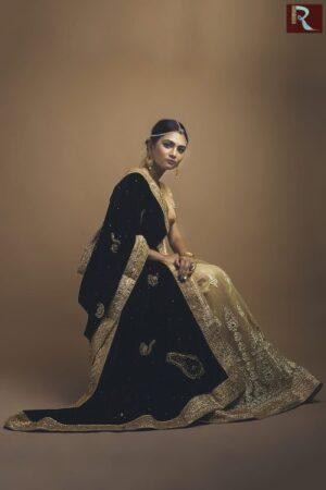 Designer Saree -Half velvet half net1